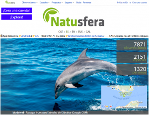 Página principal de la web.