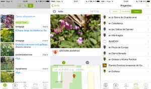 Capturas de pantalla de la aplicación móvil para el sistema operativo iOS.
